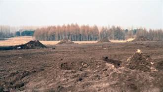9萬多平方公尺黑土被盜挖  陸官媒揭東北黑土盜賣產業鏈