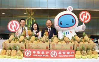 華南挺農民 買60公噸鳳梨做公益