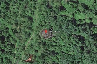 日本森林出現天空之城 學校荒廢47年被樹吞沒 8萬人驚呼