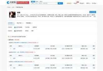 趙薇被凍結數百萬人民幣股權 涉多家公司