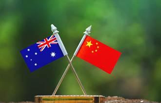 大陸200%高關稅重擊 澳洲對陸葡萄酒出口暴跌96%