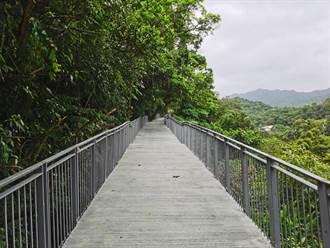 十分風景區友善步道 預定8月底開通