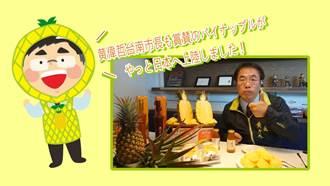 黃偉哲拍片在日本行銷台灣鳳梨