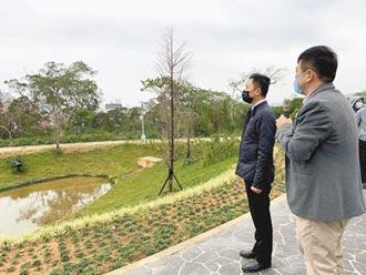 竹市詠生樹樹葬 1個月108人申請
