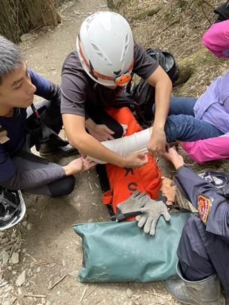 合歡山花季車潮湧現增加救援時間 遭蜂螫山友自備藥物應急