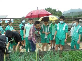 邀在地幼童當小農夫 鶯歌國中向下扎根食農教育