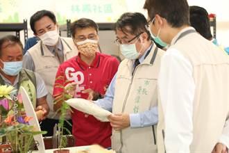 落羽松吸引31萬人次造訪 黃偉哲推動六甲新產業鏈