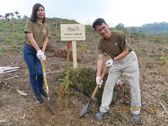嘉義林管處推動捐款認養造林  9年種下17萬株林木