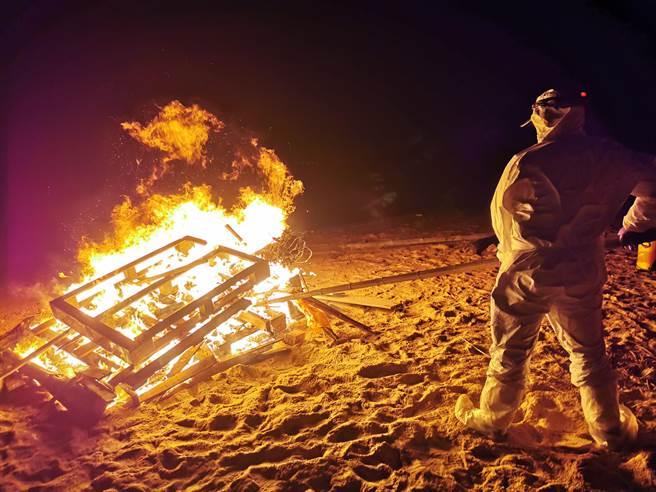金門烏沙頭海灘1日發生一頭海漂死豬,已就地焚燒掩埋。(金門縣防疫所提供)