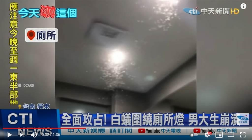 不少網友回報住家已被白蟻入侵。(圖/中天新聞)