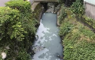 灌溉溝渠蚊蟲遍佈、飄惡臭 羅智強:蔡英文要先去給蚊子叮嗎?