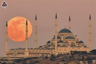 年度最大月全食5/26登場 抬頭可見暗紅色滿月