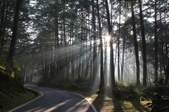 感謝第一線防疫人員 醫護5/12憑證免費進入國家森林遊樂區