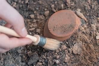 義大利挖出2千年前斷鼻頭像 專家一看驚:羅馬開國皇帝