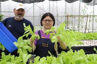 三芝日照中心結合食農學苑 教身障兒種蔬菜培養生活技能