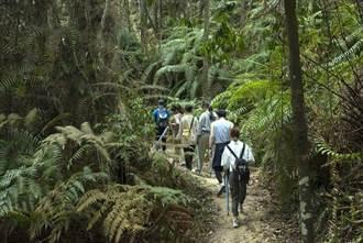 重新發現日月潭 雲品酒店新推「澀水森林步道」與單車微旅行