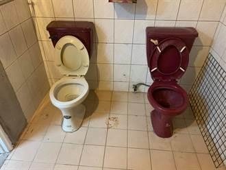 手牽手一起上廁所?詭異雙馬桶設計網笑翻