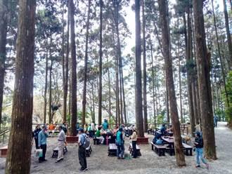 藤枝遊樂區開園 遊客湧入目睹森濤再現