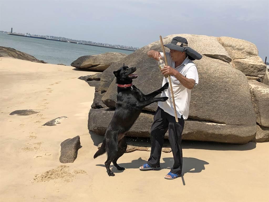 在大海中撈到有香氣石頭的「多多」,最喜歡跟主人到海邊玩。(李金生攝)