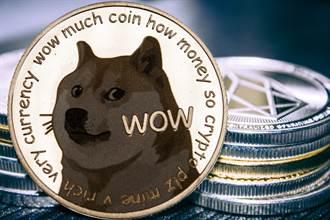 狗狗幣暴漲250倍 馬斯克一句話讓華爾街淪笑柄