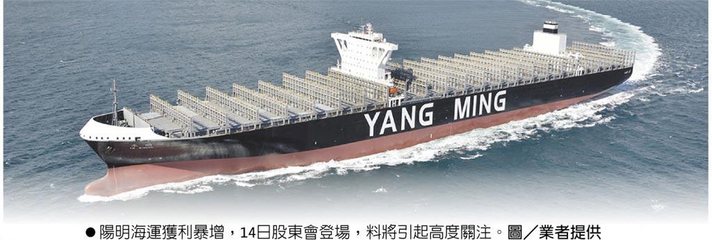 陽明海運獲利暴增,14日股東會登場,料將引起高度關注。圖/業者提供