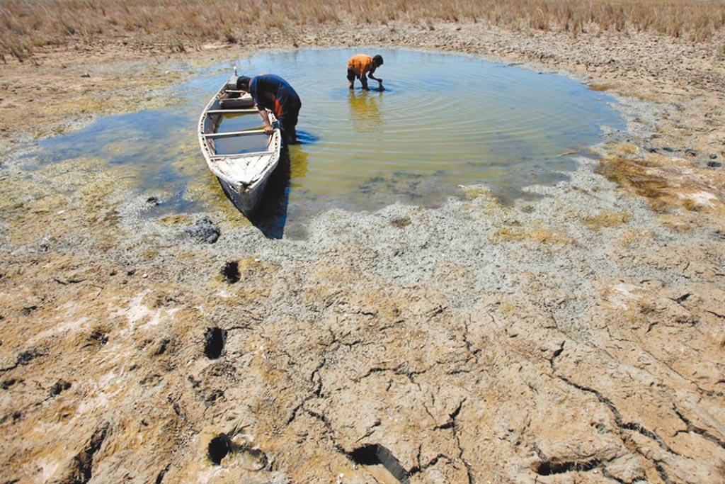 伊拉克南部一處幾近乾涸的沼澤,一名男子正在尋找魚蝦。全球水資源嚴重不足,世界近三分之一人口生活在「高度缺水」的國家。(美聯社)
