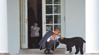 前白宮第一犬阿波病逝 歐巴馬悼念