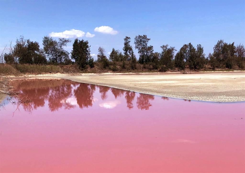 金門「粉紅湖」有「上帝的調色盤」之譽,成為各地遊客絡繹打卡的熱點。(李金生攝)