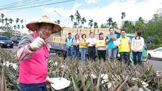 企業家挺農民 2萬斤鳳梨送馬祖