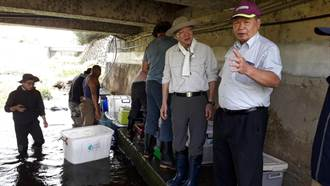救援稀有保育类台湾白鱼 中市府移地保种30尾