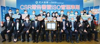 元大金CSR報告書 連七年獲BSI驗證