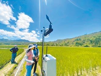 花蓮間歇灌溉啟動 APP遙控省水3成