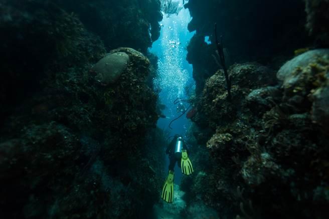 自稱來自2582年的時空旅人指出,美國國家海洋暨大氣總署將在2023年發現深海中的不明生物。(示意圖/達志影像)