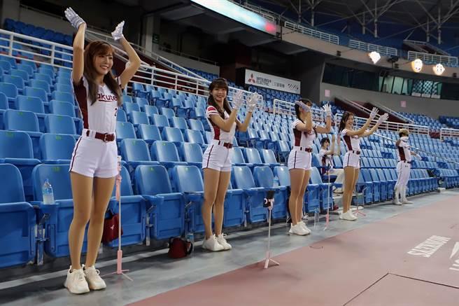 中職不開放觀眾進場,雖然沒有球迷,樂天女孩們也是熱舞應援,並透過手機直播,與線上球迷互動。(陳麒全攝)