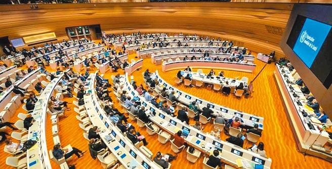 預定本月24日舉行的世衛大會(WHA)報名登記於5月10日截止,台灣因為沒有收到邀請函,已經失去主動參加的資格。(圖/取自WHO)