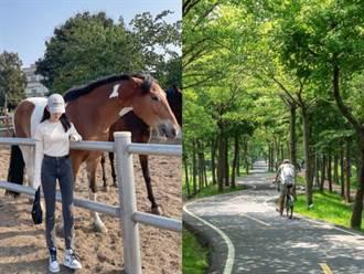 騎馬還是騎鐵馬?台中神岡一日遊7大景點美食