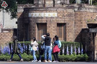 台大17日起校園門禁管理 60人以上課程遠距教學