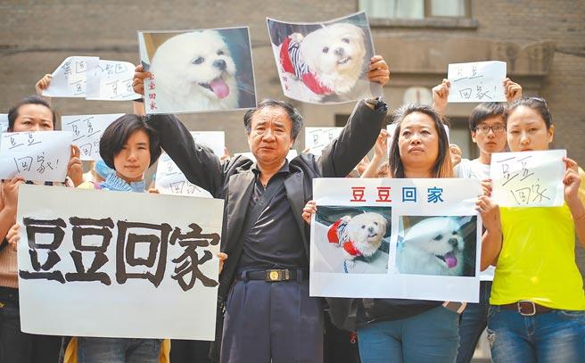 大陸寵物走失問題增多,以往只能靠各方奔走,現在有專門的寵物搜救隊。圖為幾年前南京一名老人的愛犬豆豆丟失,他透過網路、媒體等方式,希望找到愛犬。(中新社)