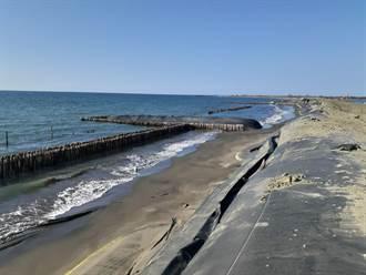 青山港沙洲復育見成效 退縮速度減緩