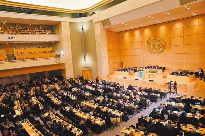 圖為第72屆世界衛生大會在瑞士日內瓦萬國宮開幕。(中新社)