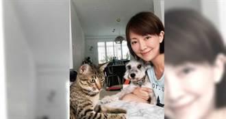 寵物情緣/3個孩子一起長大 郭昱晴家有可愛動物區