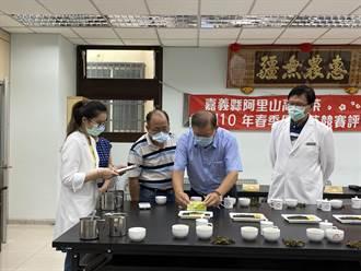 嘉縣春茶競賽成績揭曉 日光萎凋充足、品質穩定