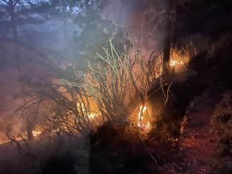 八通關杜鵑營地森林火災 地處偏遠仰賴空勤救火