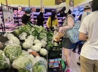 今日菜價飆38%國民黨北市議員集體呼籲防哄抬物價