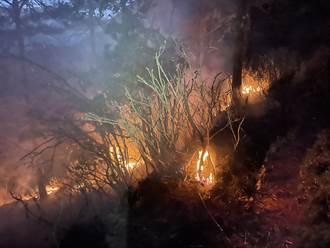 南投大水窟山森林火災竄火光冒濃煙  發動空援緊急搶救