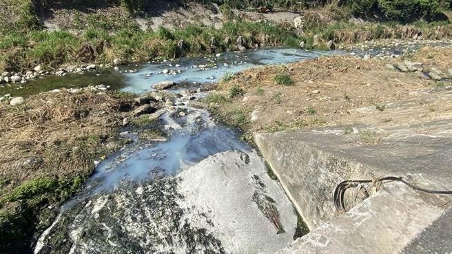 廢水從地下涵管排入旱溪,造成溪水呈現乳白色,氣味令人作噁。(王文吉攝)