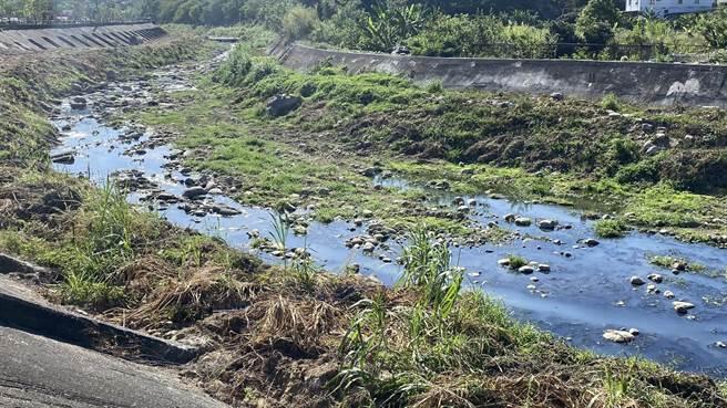 旱溪豐原段遭汙染,牛奶河蔓延將近800公尺。(王文吉攝)