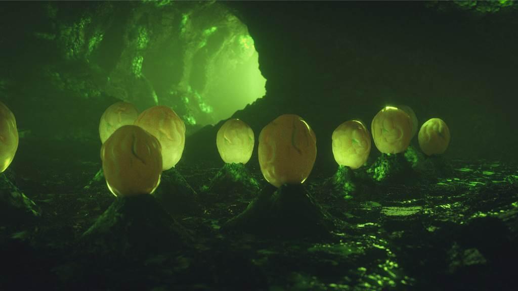 屋主在閣樓木架上,發現宛如「異形」的巢穴,沒想到竟是黃蜂的蜂巢。(示意圖/達志影像)