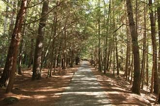 防疫再升級 東勢林區管理處轄森林育樂場域全面休園