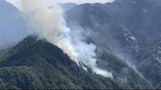 杜鵑營地煮食引發火災 違反森林法代誌大條